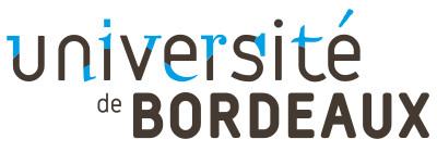 Université de Bordeaux (organizer & sponsor)